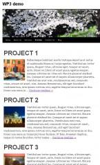 Wordpress 3 custom post type